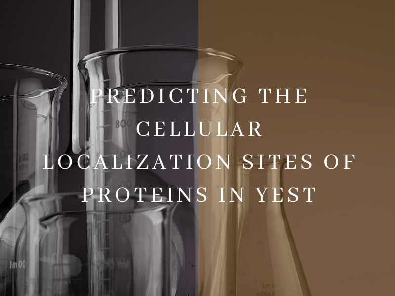 Predicting the Cellular Localization Sites of Proteins in Yest