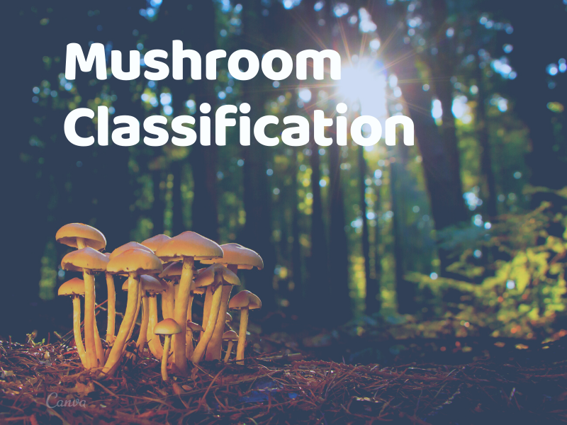 Machine Learning Project on Mushroom Classification whether it's edible or poisonous Part 1