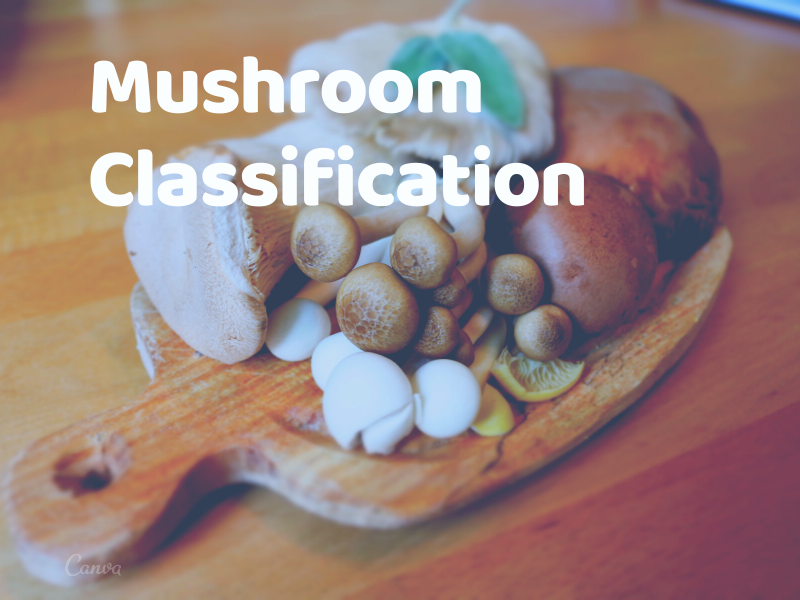 Machine Learning Project on Mushroom Classification whether it's edible or poisonous Part 2